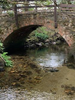 A tucked away humpback bridge near Eglwyswrw