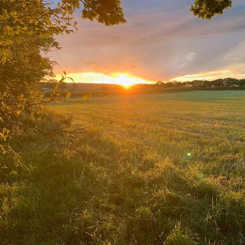 Sunset in Cilgerran, June 5, 2020